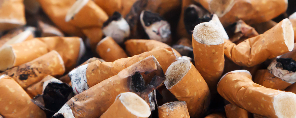 cigarette-butts-1330858848TKx