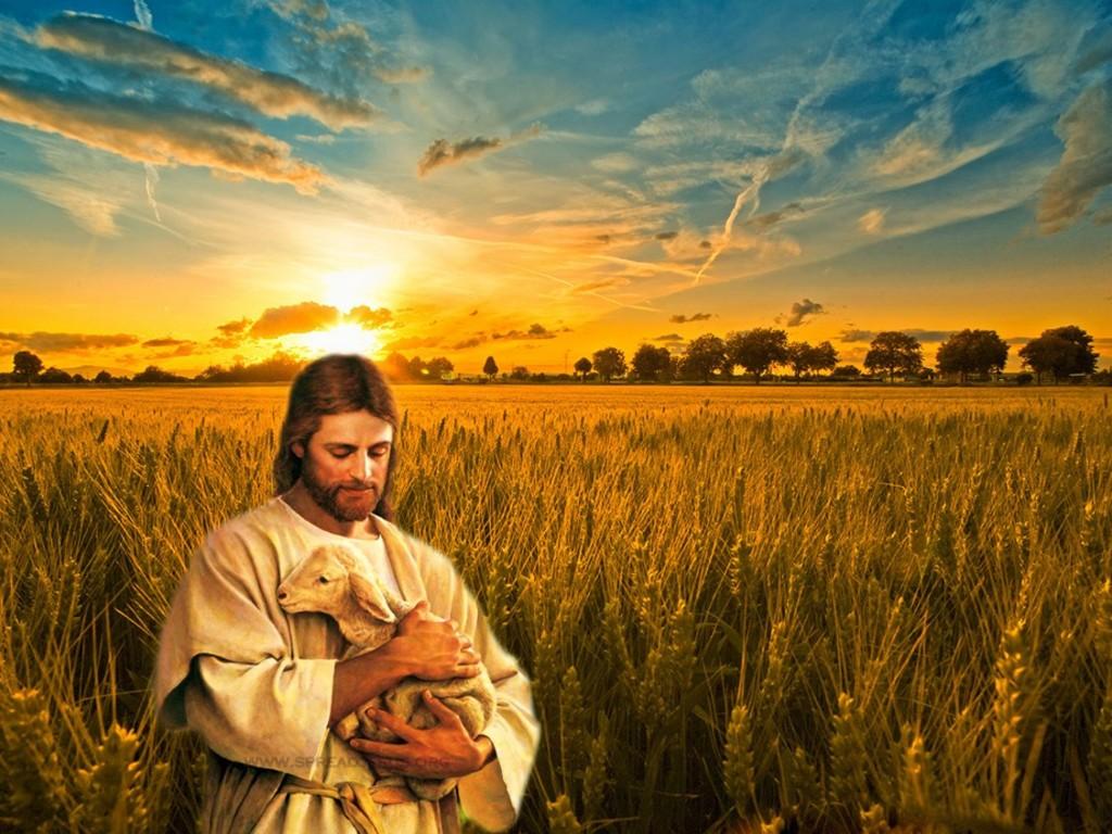my-good-shepherd-jesus-christ