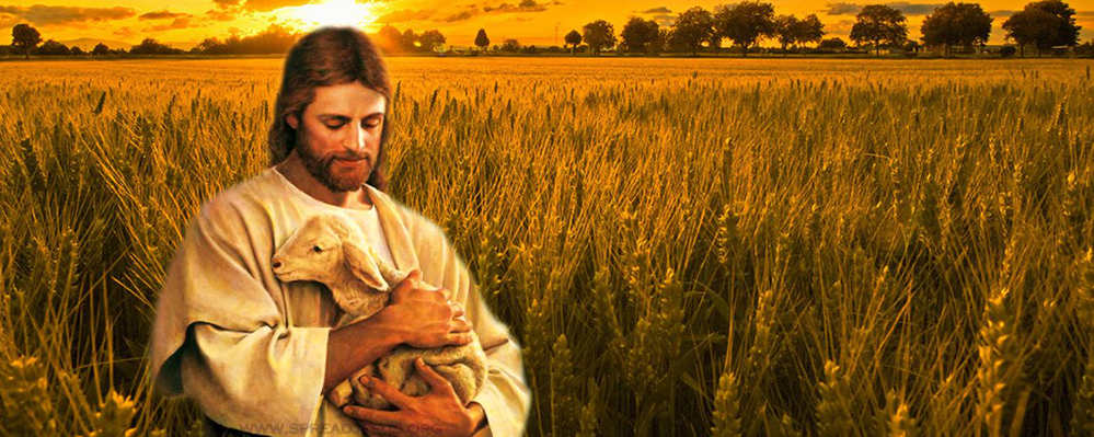 my-good-shepherd-jesus-christ