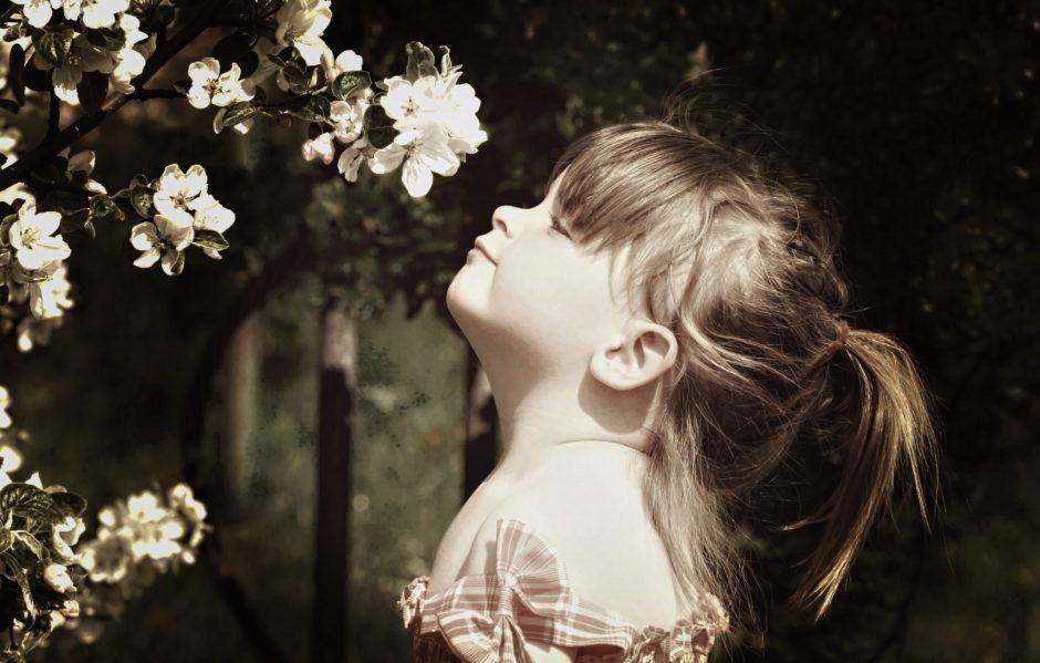 fiorinda-fiori-di-melo-cavallino-bianco-rumo_pe