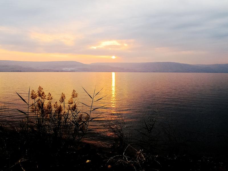 lago12_loff
