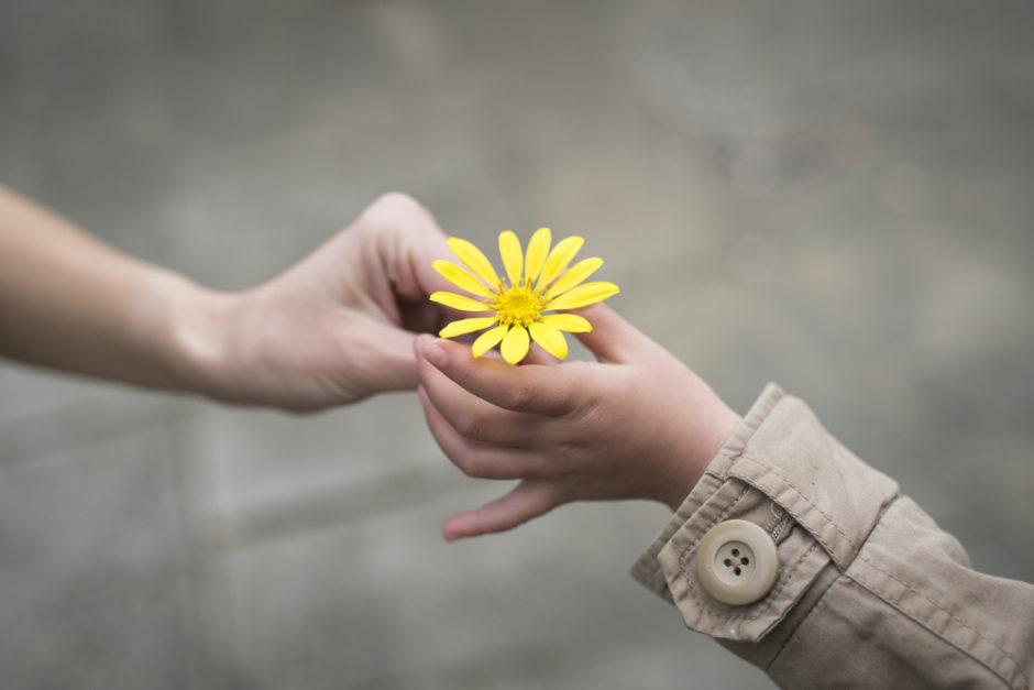 gentilezza-.jpg